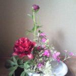 Flower☆