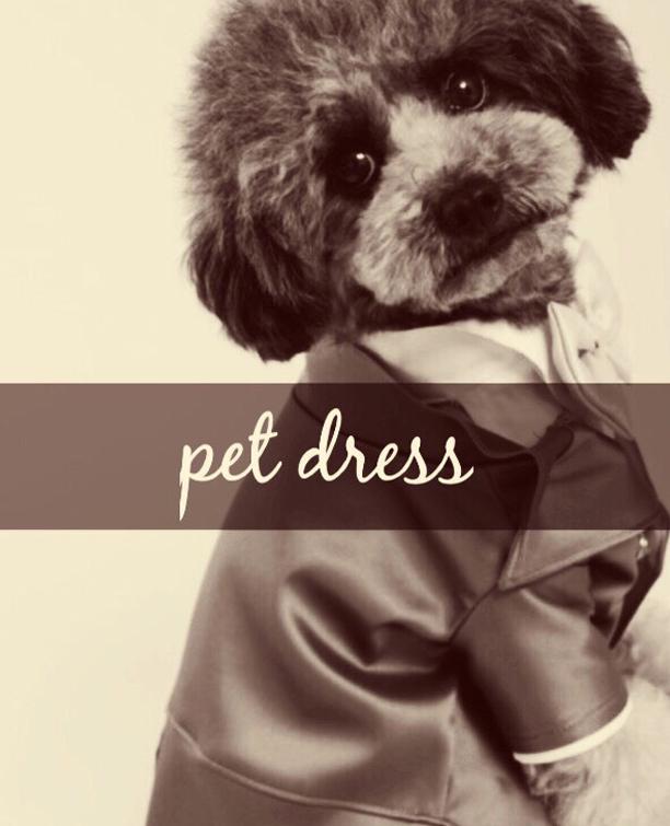 ペットドレス