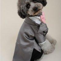 PET DRESS